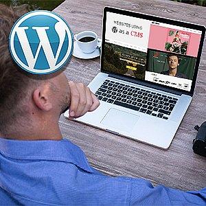 WordPress Bundle special